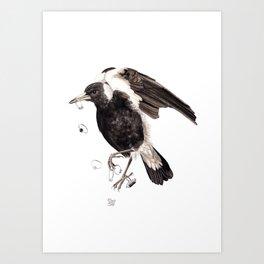 Magpie 2016 Art Print