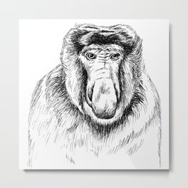 Proboscis Monkey Drawing Metal Print