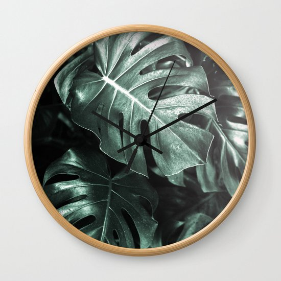 Monstera leaves, Palm Leaf by moonconcept