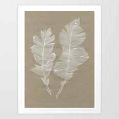 white feathers Art Print