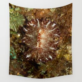 Natural Nudibranch Discodoris boholiensis Wall Tapestry