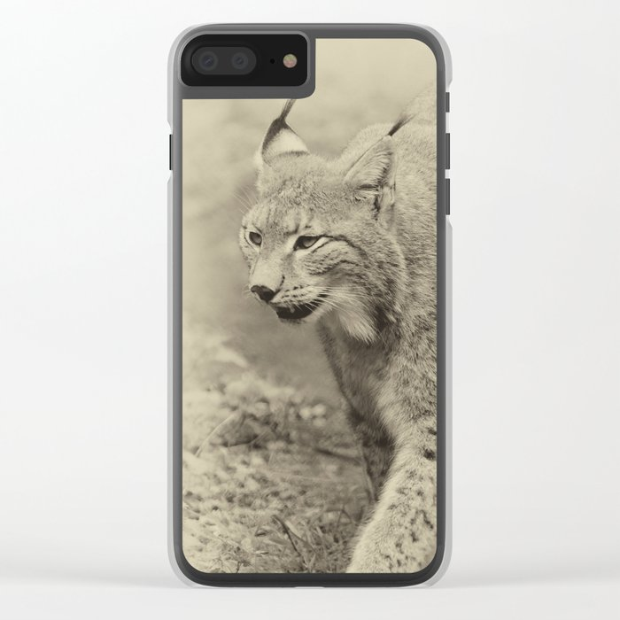 beautiful lynx Clear iPhone Case