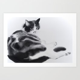 Fulopke our cat is resting Art Print