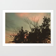 Sunset Perch Art Print