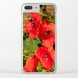 Poppies with guests Clear iPhone Case