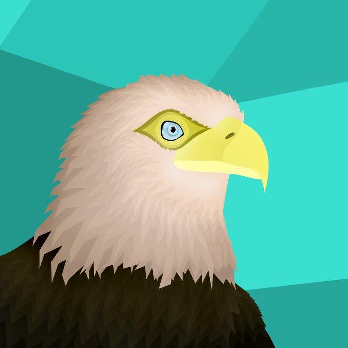 Eagle Comforters