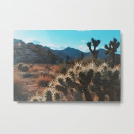 Joshua Tree #1 Metal Print