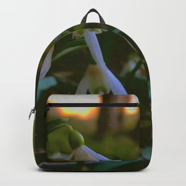 about spring Backpack