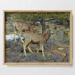 Mule Deer Serving Tray