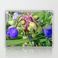 Spiderworts Flower Stems Laptop & iPad Skin