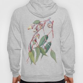 Australian eucalyptus tree branch Hoody