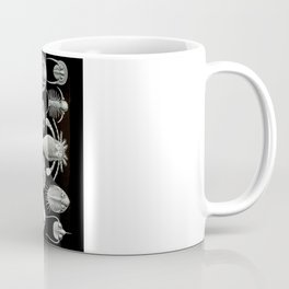 Trilobites and Fossils by Ernst Haeckel Coffee Mug