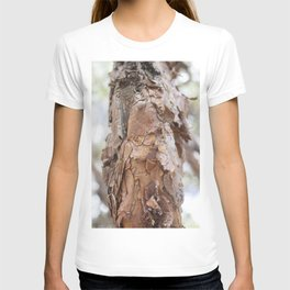 tree trunk in sacsayhuaman T-shirt