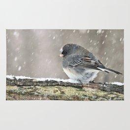 Once Upon a Snow Bird: Junco Rug