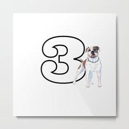Type 3 Enneagram Dog American Bull Dog Metal Print