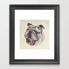 Bulldog King Framed Art Print