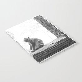 Sitting Monkey Notebook