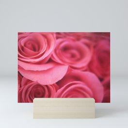 LINCOLN ROSES 66 Mini Art Print