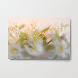Nature's Blurred Lines Metal Print