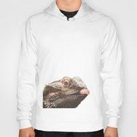 transparent Hoodies featuring Transparent Beardie by Megan Coyne