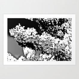 Apple blossom Digital art Art Print