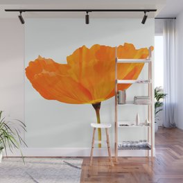 One And Only - Orange Poppy White Background #decor #society6#buyart Wall Mural