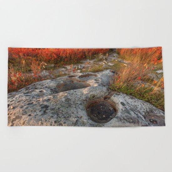 Autumn Huckleberry Fossil Beach Towel