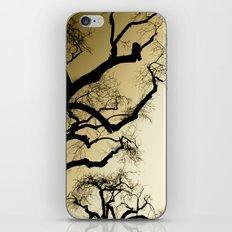Yikes! iPhone & iPod Skin