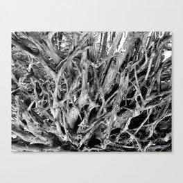Brachial Canvas Print