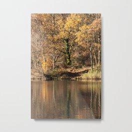 Golden Pond - 2 Metal Print