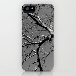 Just out of Reach iPhone Case