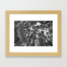 Hammock in the forest Framed Art Print