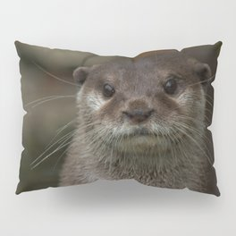 Curious Otter Pillow Sham