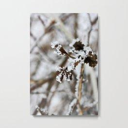 Abitibi Nature36 Metal Print
