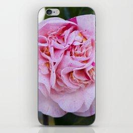 Strawberry Blonde Camellia Bloom iPhone Skin