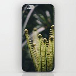 Piupiu (Crown Fern) iPhone Skin