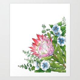 Watercolor Protea Illustration Art Print