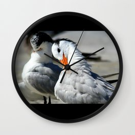 Royal Terns Wall Clock