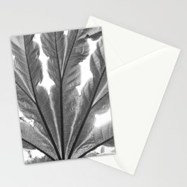 Leaf and sunlight Stationery Cards