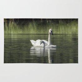 Swan with Cygnet Rug
