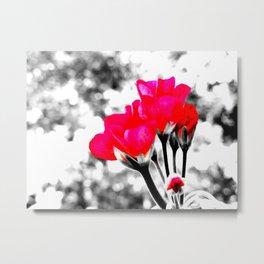 Hot Pink Flowers Pop Of Color Metal Print