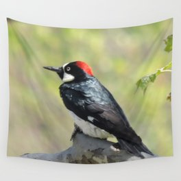 Acorn Woodpecker At Rest Wall Tapestry
