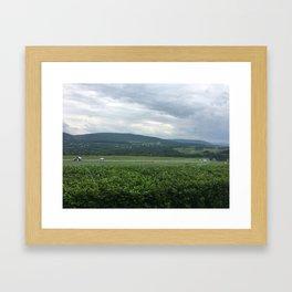 Farm Valley Framed Art Print