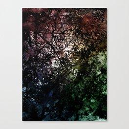 ξ Grumium Canvas Print