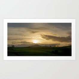 Sunset Flock Art Print