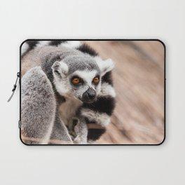 Ring-tailed lemur Laptop Sleeve