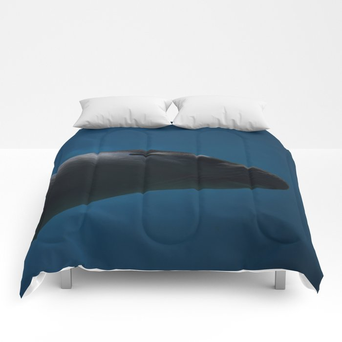 Seal I Comforters