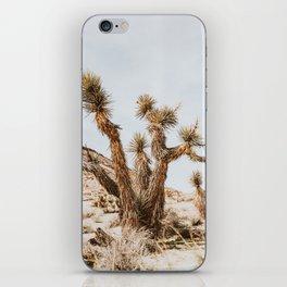 Joshua Tree III iPhone Skin