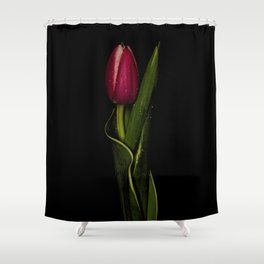 Tulip Curves Shower Curtain
