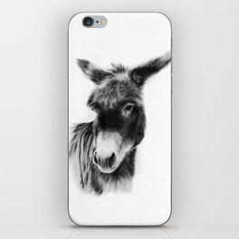 Dixie iPhone Skin
